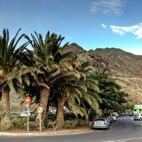 Spain 2015 Canary Tenerife 3 :: Arturs Ancans