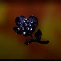 черный цветочек :: Svetlana AS