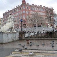 Санкт-Петербург. Львиный мост... :: Владимир Павлов