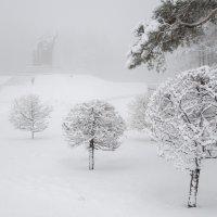 зима пришла! :: Vladimir Beloborodov