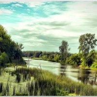 Река Ворскла :: Евгений Кочуров