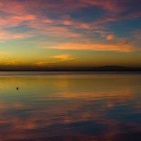 На закате. :: Ирина Кеннинг