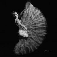 White aerial ballet. :: krivitskiy Кривицкий
