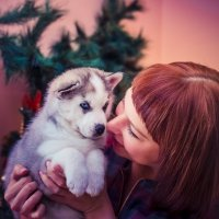 Наталия и малыш Хаски :: Аннета /Анна/ Шу