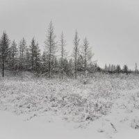 Зима.. :: Mc!! .....