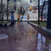 Дождь по асфальту рекою струится... :: Валентина Харламова