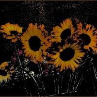 Жёлтые цветы :: Нина Корешкова