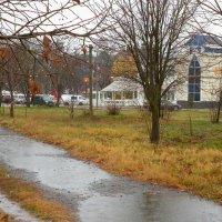 Дождь в Измаиле, Украина :: Жанна Романова