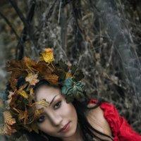 Осень :: Денис Карманов