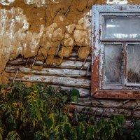 Покинутый дом.... :: Мария Богуславская