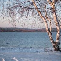 Поздняя осень :: Андрей Куприянов