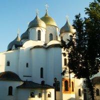Великий Новгород :: Galina Belugina