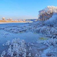 Задышали голубою тишиной... :: Лесо-Вед (Баранов)