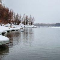Пасмурно, небольшой снег... :: Андрей Поляков