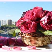 Розовое утро! :: Татьяна