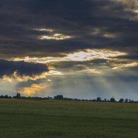 Солнце сквозь щёки туч :: Денис Samuila