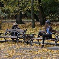Осенний фотосет 2 :: john dow