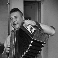 Играй гармонь :: Дмитрий Сахончик