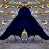 А может, не ворона... (из области фантастики) :: Нина Корешкова