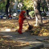 Выметая осень :: Наталья (D.Nat@lia) Джикидзе (Берёзина)