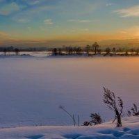 Туман :: Анатолий Иргл