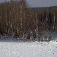 Косьва .остров. :: petyxov петухов