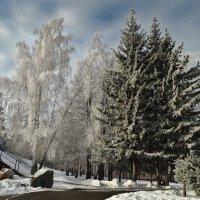 Ясный день :: Виктор Четошников