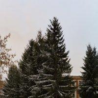 Без названия :: Алексей Масалов
