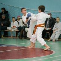 Бой за первое место... :: Sergey Apinis