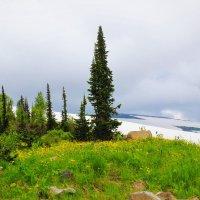 Июнь на перевале :: Сергей Чиняев