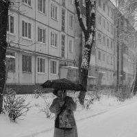 Падал первый снег :: Елена Миронова