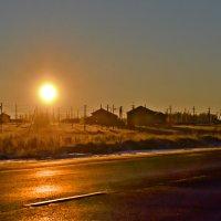 Зимний солнцепек. :: cfysx