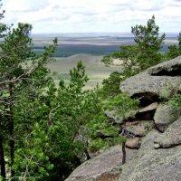 Природа Северного Казахстана :: Александр Бабин