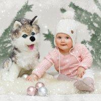 С первым днем зимы!-3 :: Elena Klimova