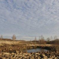 Осенний пейзаж... :: Фёдор Куракин