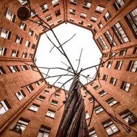 Двор-колодец на Малом проспектн Петроградской стороны :: Владимир Горубин