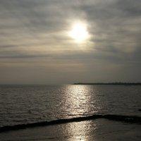 25 ноября 2015г. Таганрогский залив. :: Ирина Прохорченко
