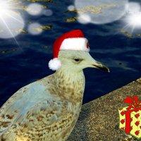 Ах, долго ждать праздника, а подарок сейчас хочется! Потому и грустная... :: Nina Yudicheva