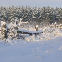 Зимняя сказка продолжается.... :: Павлова Татьяна Павлова