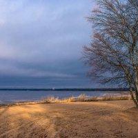 Пляж у парка :: Виталий