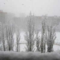 А снег идёт... :: Самохвалова Зинаида