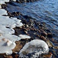 Ледяные шапочки :: Ольга