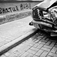 Владимир Пальчик - Спасибо что живой :: Фотоконкурс Epson