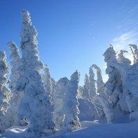 Сказочные фигуры из снега :: Милешкин Владимир Алексеевич