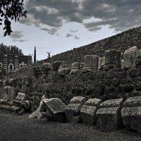 Capernaum :: Eugene *