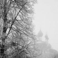 Туманный день. :: Михаил Попов