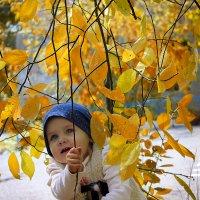 Осень золотая :: Риша Сафиулина