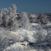 Белоснежные одежды всем деревьям соткала... :: Александр Попов