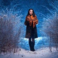 Первый снег :: Тимофей Богданов