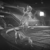 Заброшенный манеж :: Billie Fox